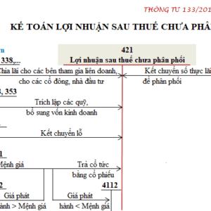 So Do Chu T Tai Khoan 421