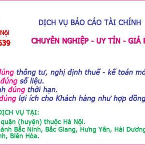 Cong Ty Nhan Lam Bao Cao Tai Chinh Tai Hoan Kiem