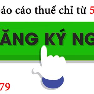 Dich Vu Lam Bao Cao Thue Tai Quan Hong Bang Hai Phong